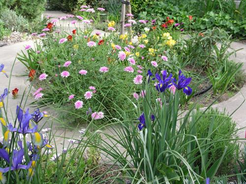 Our April front garden
